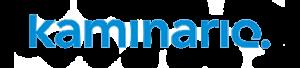 kaminario k2 reviews